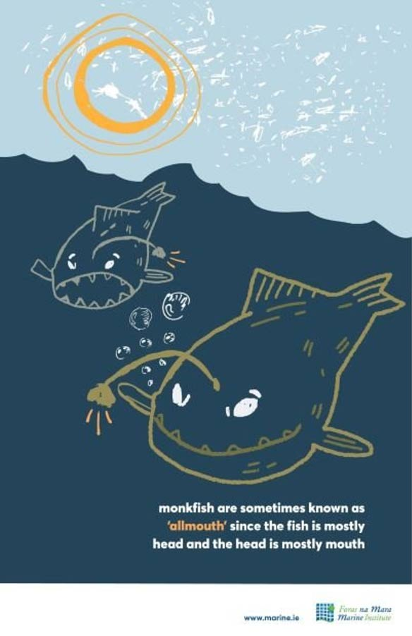 Ocean facts and colouring sheets
