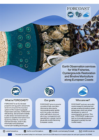 FORCOAST Project Flyer